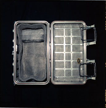 lunar-rock-case.jpg